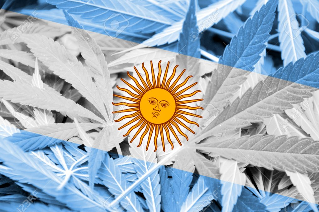 Argentina Flag on cannabis background. Drug policy. Legalization of marijuana
