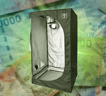 Chile consume - El retail ya está acaparando la venta de indoors